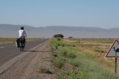 marokko piotr nogal noxot 281