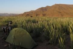 marokko piotr nogal noxot 293