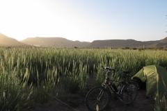 marokko piotr nogal noxot 297