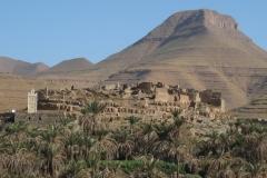 marokko piotr nogal noxot 299