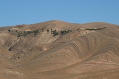 marokko piotr nogal noxot 302