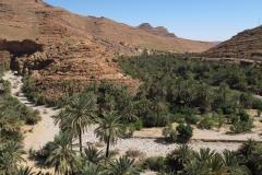 marokko piotr nogal noxot 358