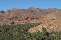 marokko piotr nogal noxot 359