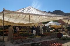 marokko piotr nogal noxot 375
