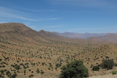 marokko piotr nogal noxot 377