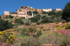 marokko piotr nogal noxot 394