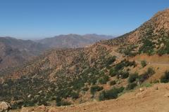 marokko piotr nogal noxot 395