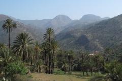 marokko piotr nogal noxot 404