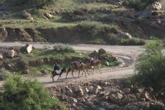 marokko piotr nogal noxot 406