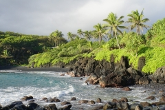 hawaii 030 copyright piotr nogal