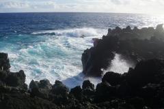 hawaii 035 copyright piotr nogal