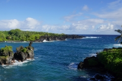 hawaii 038 copyright piotr nogal
