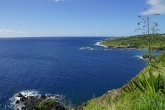 hawaii 088 copyright piotr nogal