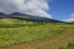 hawaii 091 copyright piotr nogal