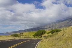 hawaii 093 copyright piotr nogal