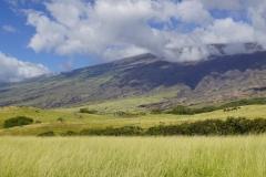 hawaii 097 copyright piotr nogal