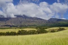 hawaii 098 copyright piotr nogal