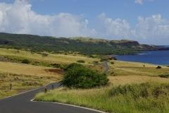 hawaii 106 copyright piotr nogal