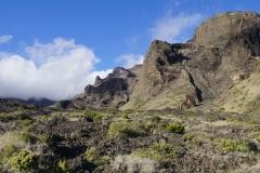 hawaii 144 copyright piotr nogal