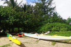 hawaii 260 copyright piotr nogal