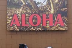 hawaii 265 copyright piotr nogal