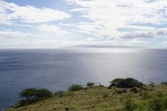 hawaii 267 copyright piotr nogal