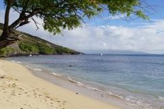 hawaii 271 copyright piotr nogal