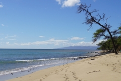 hawaii 272 copyright piotr nogal