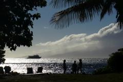 hawaii 276 copyright piotr nogal
