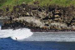 hawaii 287 copyright piotr nogal