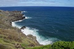 hawaii 294 copyright piotr nogal