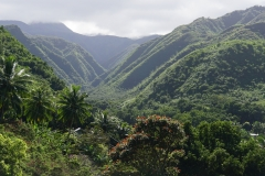 hawaii 300 copyright piotr nogal