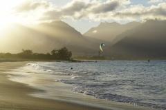 hawaii 323 copyright piotr nogal