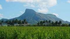 Mauritius copyright piotr nogal 20191128_091529