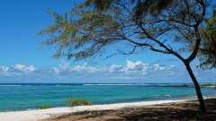 Mauritius copyright piotr nogal 20191128_135037