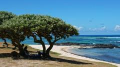 Mauritius copyright piotr nogal 20191128_140112