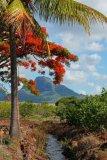 Mauritius copyright piotr nogal 20191129_155808