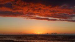 Mauritius copyright piotr nogal 20191129_183113
