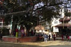 013-Nepal-annapurna-copyright-piotr-nogal