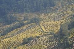 017-Nepal-annapurna-copyright-piotr-nogal