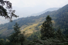 018-Nepal-annapurna-copyright-piotr-nogal