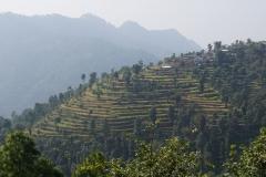 035-Nepal-annapurna-copyright-piotr-nogal
