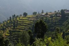 036-Nepal-annapurna-copyright-piotr-nogal