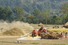 063-Nepal-annapurna-copyright-piotr-nogal