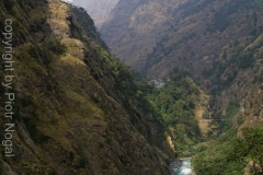 072-Nepal-annapurna-copyright-piotr-nogal