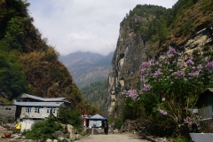 101-Nepal-annapurna-copyright-piotr-nogal