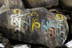 121-Nepal-annapurna-copyright-piotr-nogal