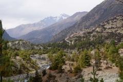 132-Nepal-annapurna-copyright-piotr-nogal
