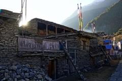 144-Nepal-annapurna-copyright-piotr-nogal