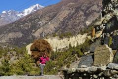 146-Nepal-annapurna-copyright-piotr-nogal